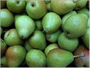 New-season-pears.jpg