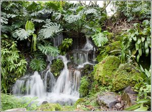 Tropical-waterfall.jpg