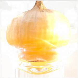 Glass-Onion.jpg